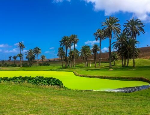 El Cortijo – Gran Canaria